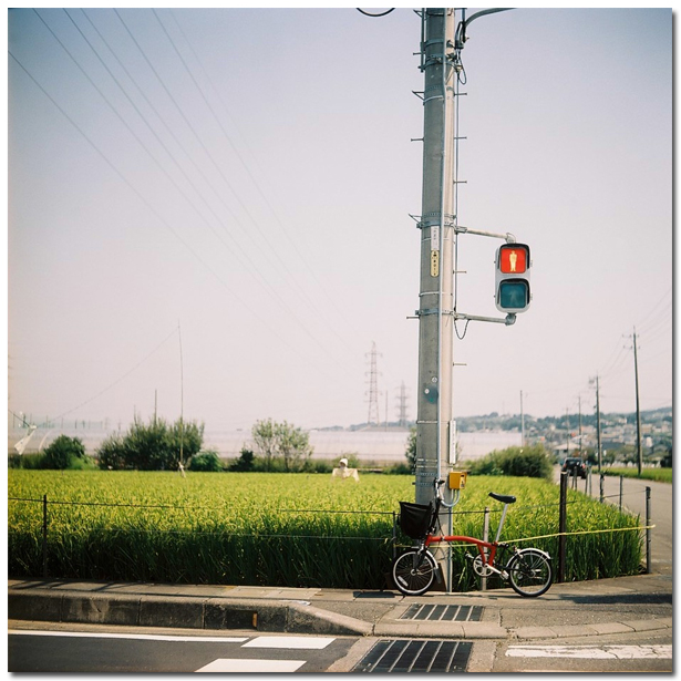 20090818_autocord008.jpg